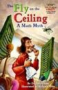 RH-SIR(Step4):The Fly on the Ceiling a Math Myth