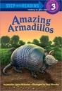 RH-SIR(Step3):Amazing Armadillos