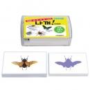 [매칭 보드게임 보급형] 나꺼: 곤충 그림자 찾기